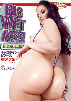 DSD347 | BIG WET ASS! ~濡れた巨尻たち!~